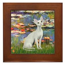 Lilies (#2) & Devonshire Rex Framed Tile