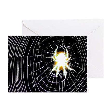 Spooky Spider Greeting Cards (Pk of 10)