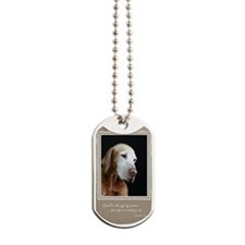 NCQ006_Flynn Dog Tags