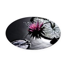 lily pad Oval Car Magnet