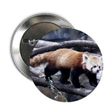 Red Panda 3 Button