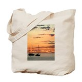 Sunset in Cabo Tote Bag