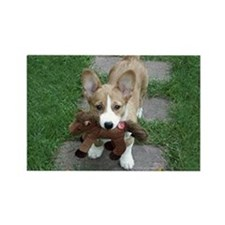 corgi_puppy_and_friend Rectangle Magnet