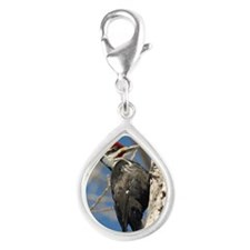 ornament_oval 2 Silver Teardrop Charm