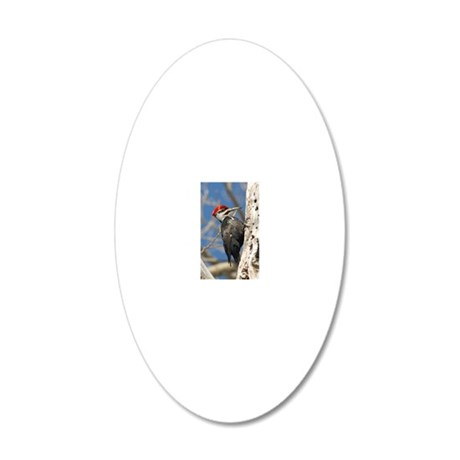 ornament_oval 2 20x12 Oval Wall Decal