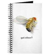 got ether? Journal