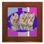 3 Yorkie Puppies Framed Tile