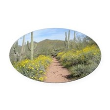 Lake Pleasant Spring Oval Car Magnet