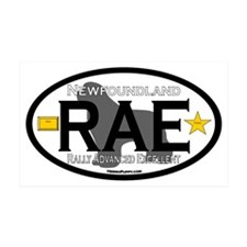 Newfoundland Rally RAE Title Wall Decal