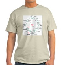 Kreb's Cycle Ash Grey T-Shirt