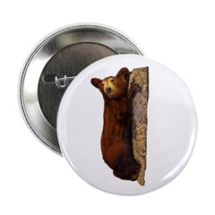 brown bear 2.25&quot; Button (10 pack)