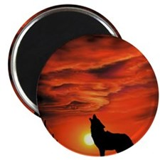 Coyote Howling Magnet