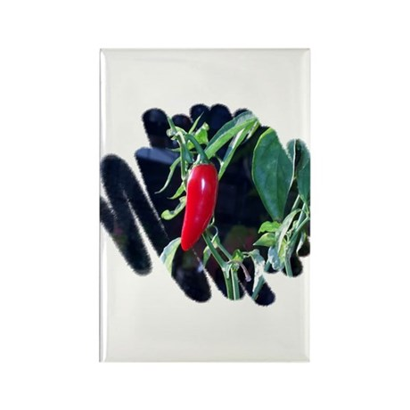 Red Pepper Rectangle Magnet