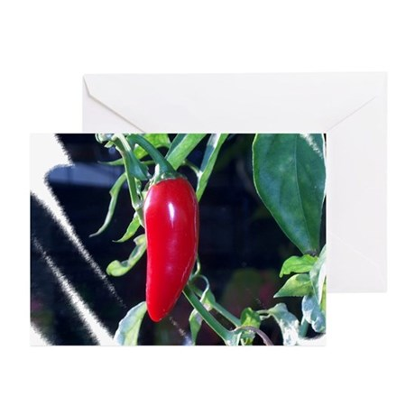 Red Pepper Greeting Cards (Pk of 10)