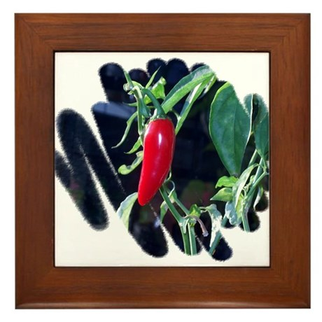 Red Hot Pepper Framed Tile