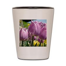 Tulip Garden 83M purple lavender Tulips Shot Glass