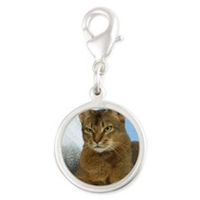 Abyssinian Cat 9Y009D-020 Silver Round Charm