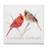 Cardinal pair Tile Coaster