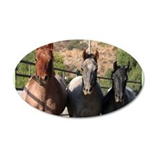 3 Roan Horses Wall Decal