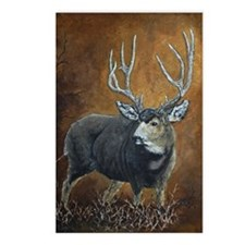 Buck deer oils Postcards (Package of 8)