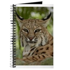 Bobcat 2 Journal