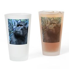 square monkey Drinking Glass
