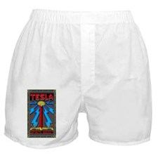 TESLA_COIL-5x8_journal Boxer Shorts