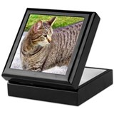 Tabby Cat Keepsake Box