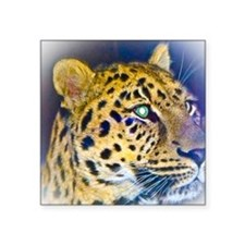 "leopard BIG Square Sticker 3"" x 3"""