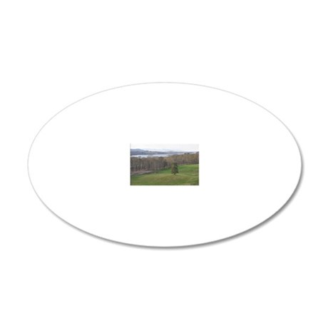 DSC_0028poster 20x12 Oval Wall Decal