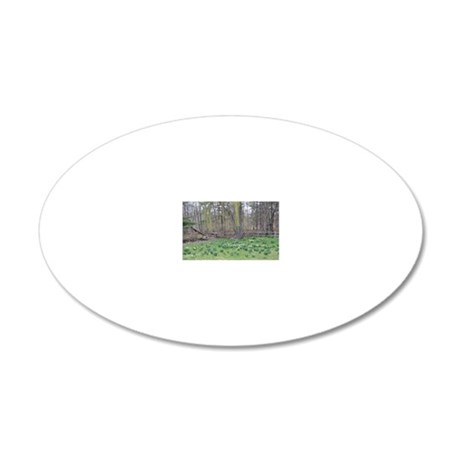 DSC_0410poster 20x12 Oval Wall Decal
