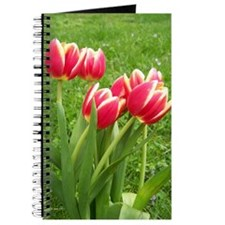 Tulips Journal