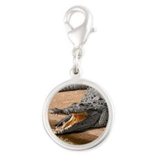 GatorReflection_stadium Silver Round Charm