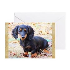 Puppy Love Doxie Greeting Card