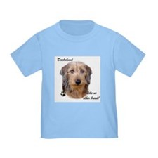 Dachshund Breed T