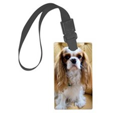 chestersit Luggage Tag
