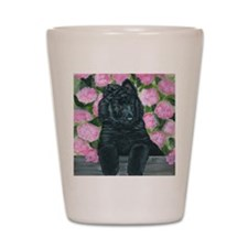 bel shep flower baby Shot Glass
