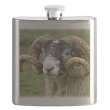 Sheep 8R17D-12 Flask