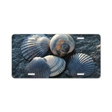 Sea Shells Aluminum License Plate