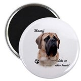Mastiff Breed Magnet