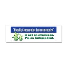 Fiscally conservative environmen Car Magnet 10 x 3
