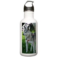 Alaskan Klee Kai looki Water Bottle
