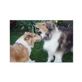 New Collie buds Rectangle Magnet