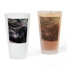 A Sleeping Grizzly Bear Drinking Glass