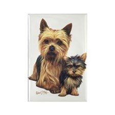 Yorkie Terrier  Pup Rectangle Magnet