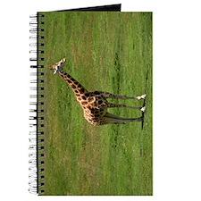 A UGANDA GIRAFFE Journal