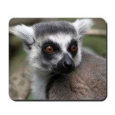 lemur card Mousepad