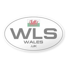 UN-Style Oval Automobile Sticker - Wales