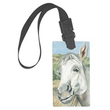 What was the Question Luggage Tag