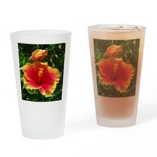 Florida Flower Drinking Glass